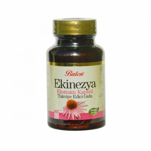 Echinacea Extract, 300 mg, 60 Capsules